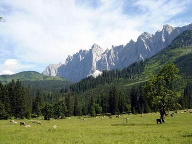 Großer Ahornboden i Karwendelbergen