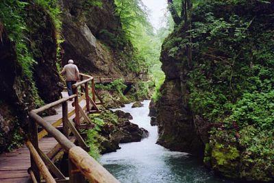 Slovenien är ett grönt, kuperat och välkomnande land