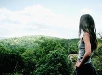 bild utsikt skog